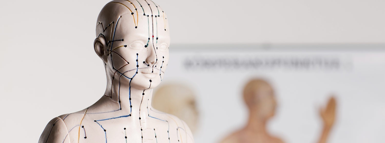 Bliv Registeret Akupunktør hos Viborg Helsepraktik
