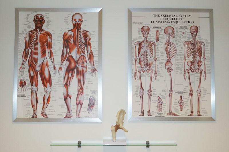 Massør uddannelse på Viborg Helsepraktik